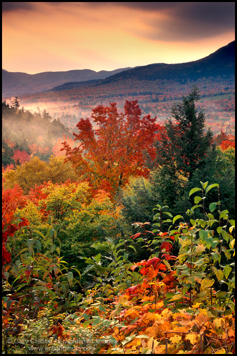 Image: Fall colors in the White Mountains, New Hampshire