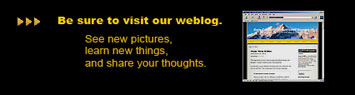 Subscribe here to receive Enlightened Images Newsletter