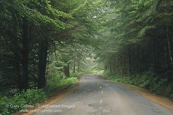 http://enlightphoto.com/webpages/road1/hum-1008.jpg