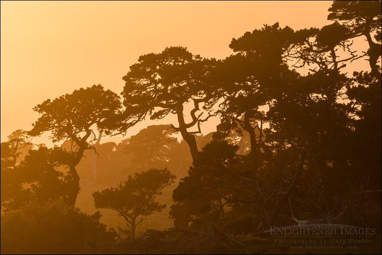 Off the Beaten Path Point Reyes Workshop May 4-6