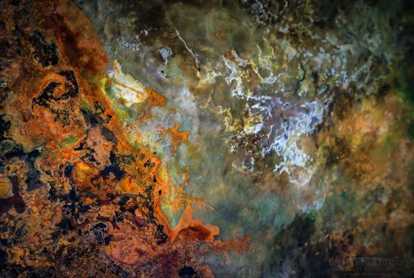 Cosmic Nebula Explosion of Life; Cyanobacteria on display at the Exploratorium, San Francsico, California