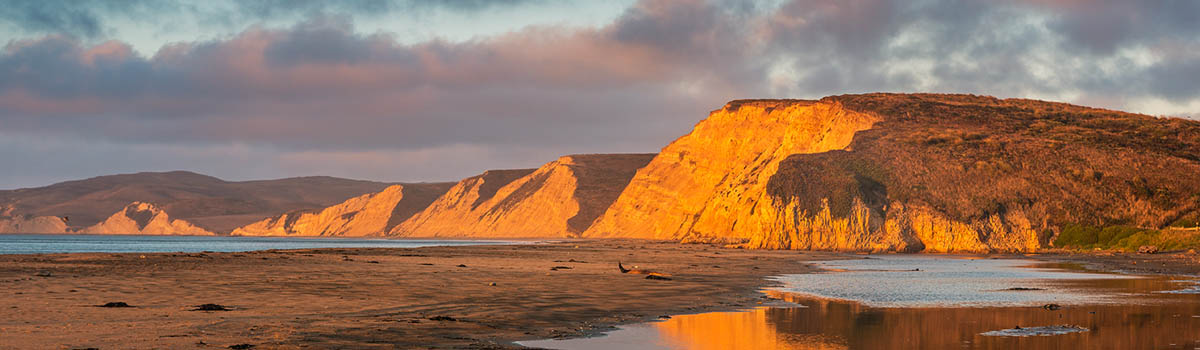 Natural Wonders of Point Reyes – Nov 4-6