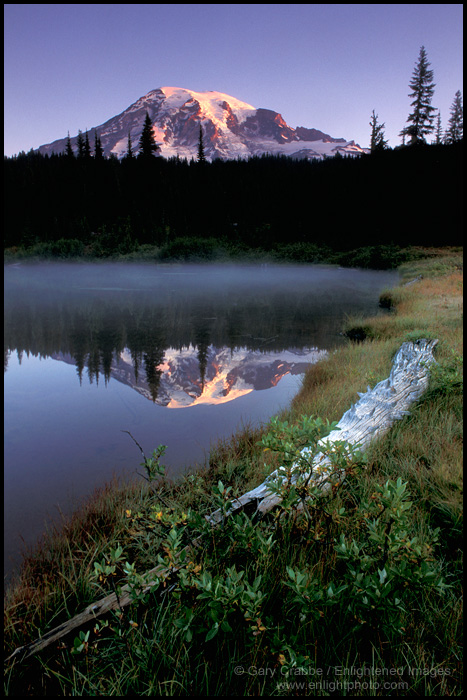 Image: Mount Rainier reflected in Reflection Pond, Mount Rainier National Park, Washington