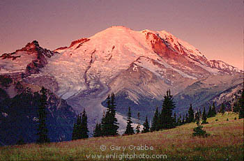 Image: Mount Rainier Mount Rainier National Park, Washington